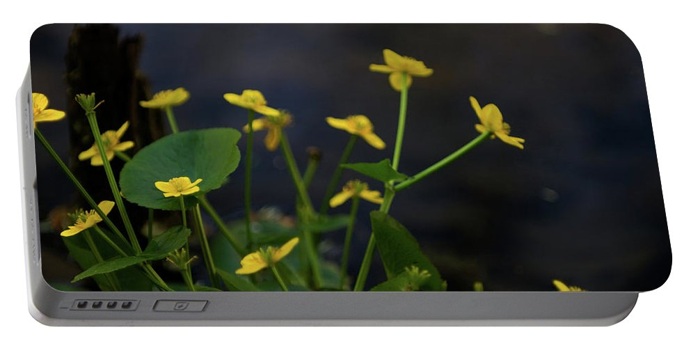 macro Portable Battery Charger featuring the photograph Beauty On The Waters Edge by Paul Mangold