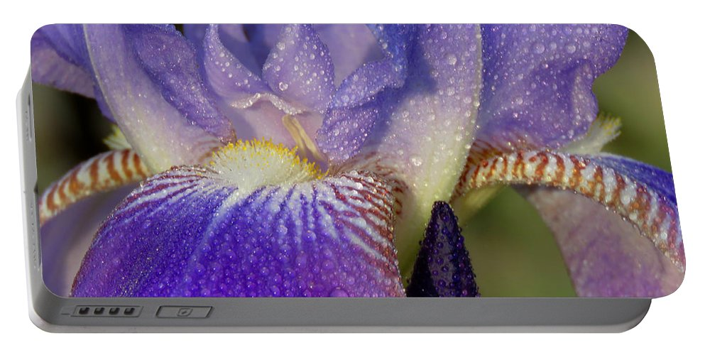 Iris Portable Battery Charger featuring the photograph Beauty Within by Dianne Cowen