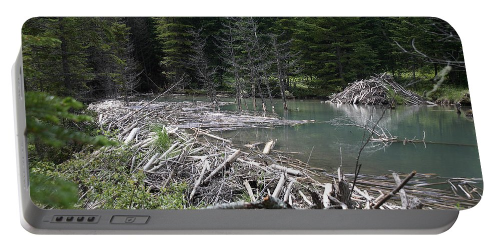 Beaver Portable Battery Charger featuring the photograph Beaver Dam And Lodge by Ted Kinsman