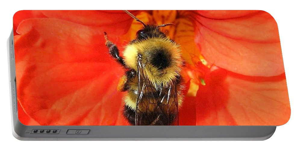 Bee Portable Battery Charger featuring the photograph Bee And Nasturtium by Will Borden