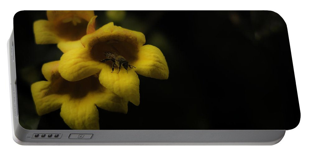 Bee Portable Battery Charger featuring the photograph Bee In A Trumpet by Chris Coffee