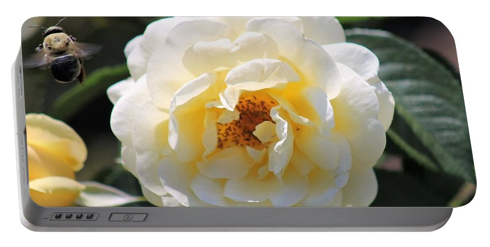 Flowers Portable Battery Charger featuring the photograph Bee My Rose by James Haney