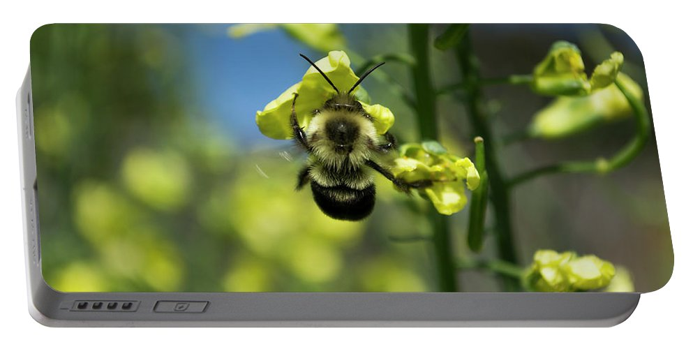 Bee Portable Battery Charger featuring the photograph Bee On Broccoli Flower by Kara Kelso