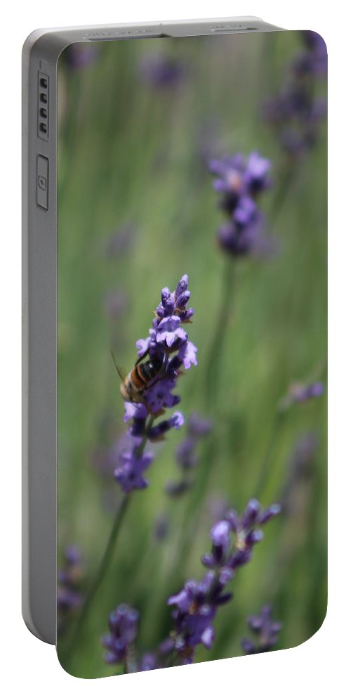 Deep Purple Lavender Portable Battery Charger featuring the photograph Bee on Deep Purple Lavender Spike by Colleen Cornelius