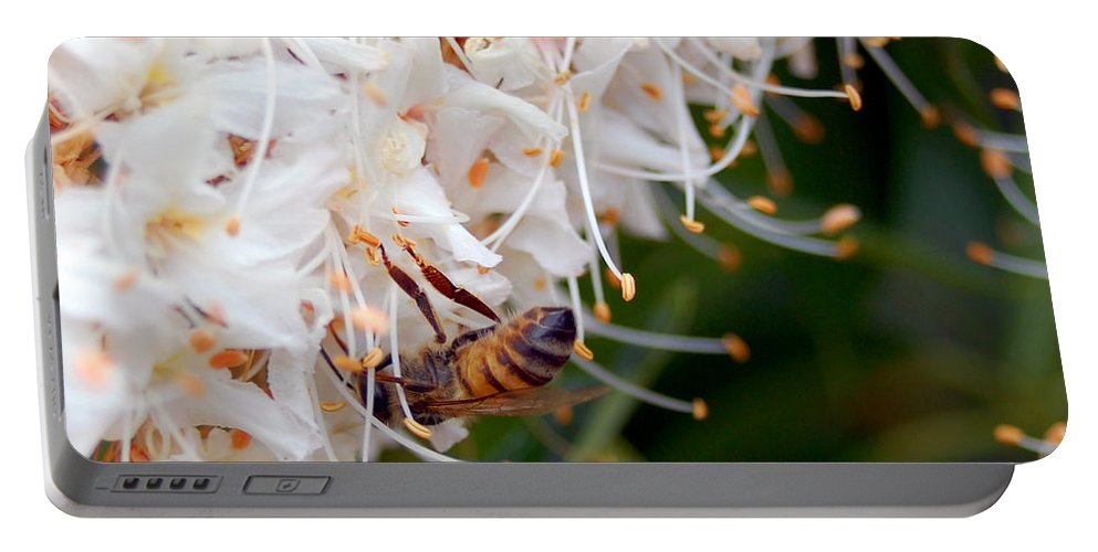 Flower Portable Battery Charger featuring the photograph Bee On Flowers 1 by Amy Fose
