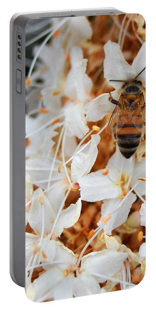 Flower Portable Battery Charger featuring the photograph Bee On Flowers 2 by Amy Fose