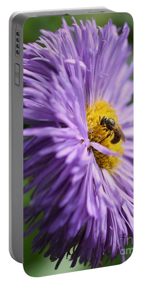 Flower Portable Battery Charger featuring the photograph Bee On Purple Daisy by Smilin Eyes Treasures