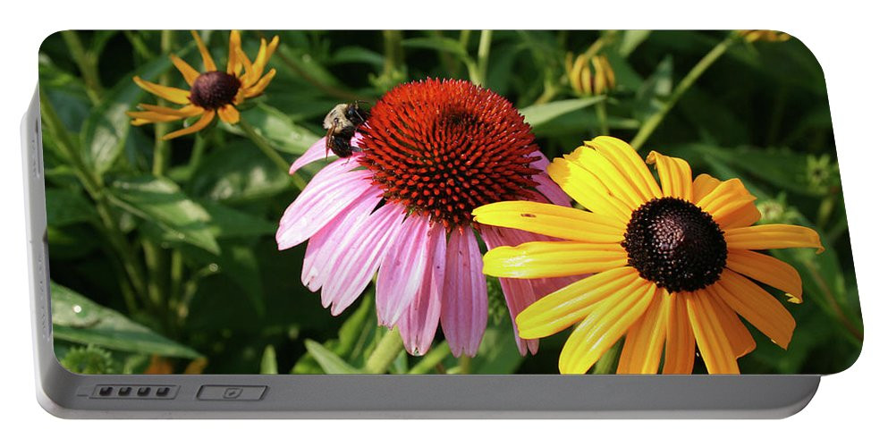 Cone Flower Portable Battery Charger featuring the photograph Bee on the Cone Flower by Greg Joens