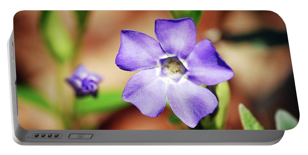 Flower Portable Battery Charger featuring the photograph Before And After by Lori Tambakis