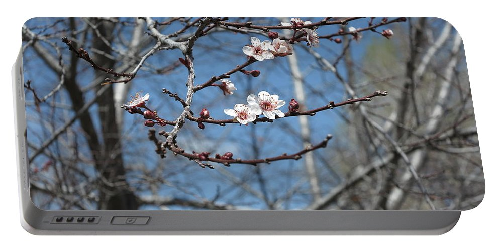 Nature Portable Battery Charger featuring the photograph Beginnings by Jessica Myscofski