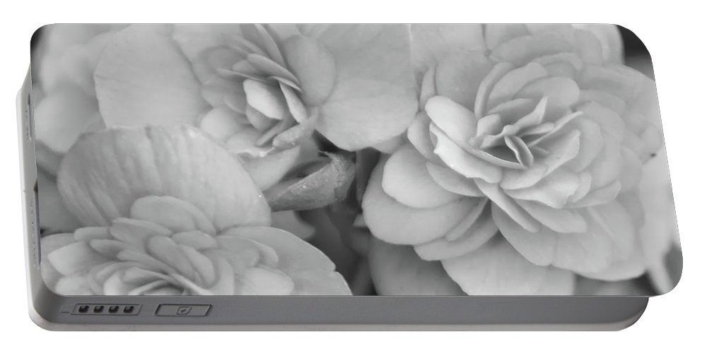 Begonia Portable Battery Charger featuring the photograph Begonias In Black And White by Olga Hamilton