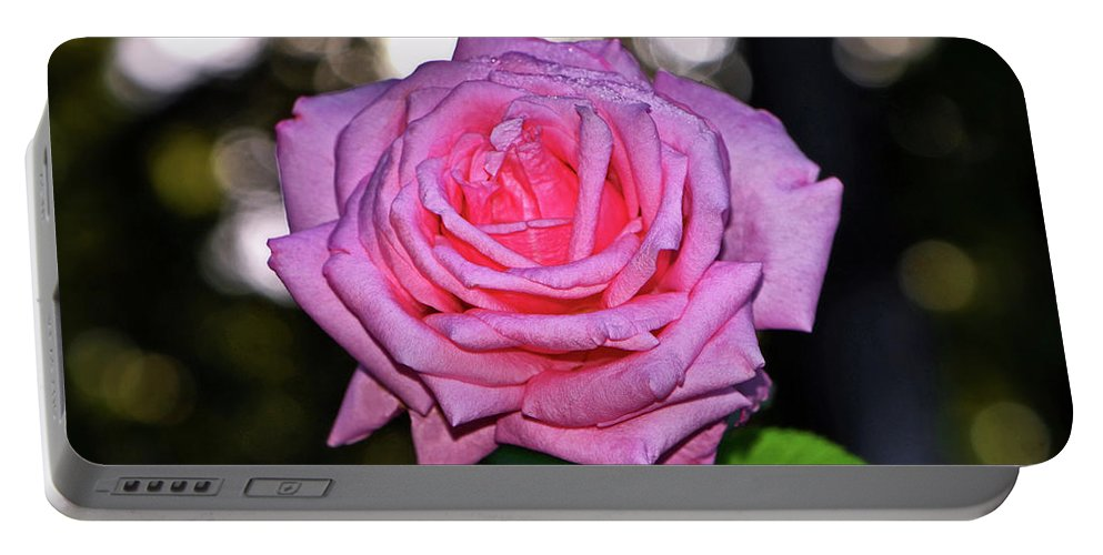 Rose Portable Battery Charger featuring the photograph Belinda's Dream Rose 004 by George Bostian