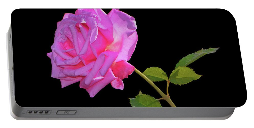 Rose Portable Battery Charger featuring the photograph Belinda's Dream Rose 005 by George Bostian