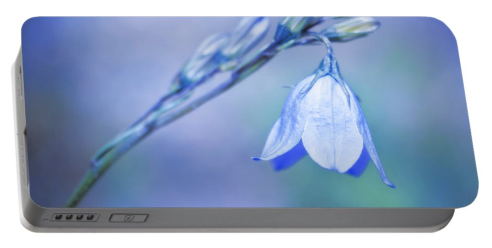 2011 Portable Battery Charger featuring the photograph Bell Flower by Beth Riser