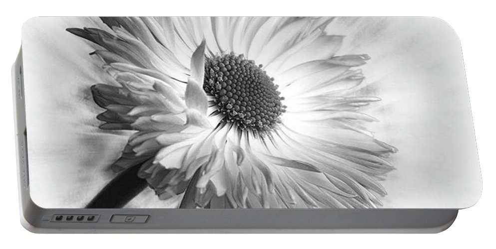 Beautiful Portable Battery Charger featuring the photograph Bellis In Mono  #flower #flowers by John Edwards