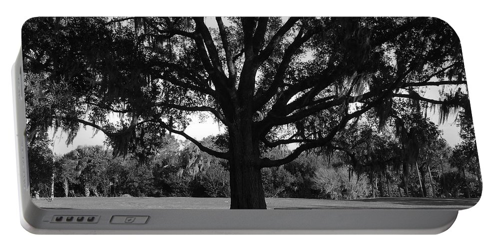 Park Bench Portable Battery Charger featuring the photograph Bench Under Oak by David Lee Thompson