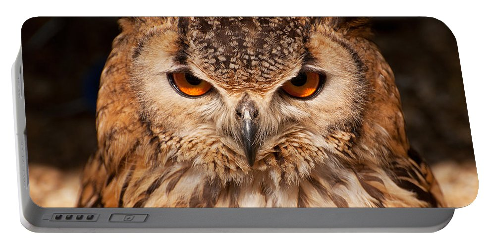 Owl Portable Battery Charger featuring the photograph Bengal Owl by Chris Thaxter