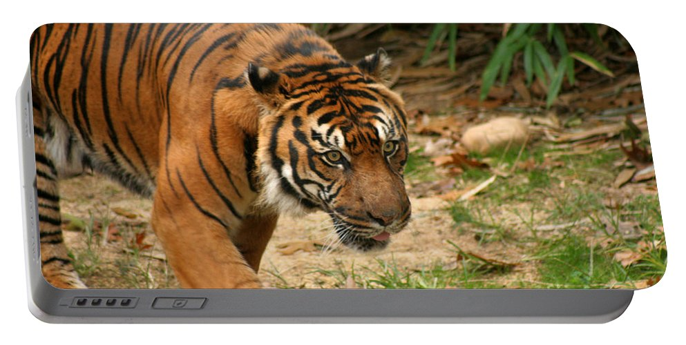 Bengal Portable Battery Charger featuring the photograph Bengal Tiger II by Thomas Marchessault