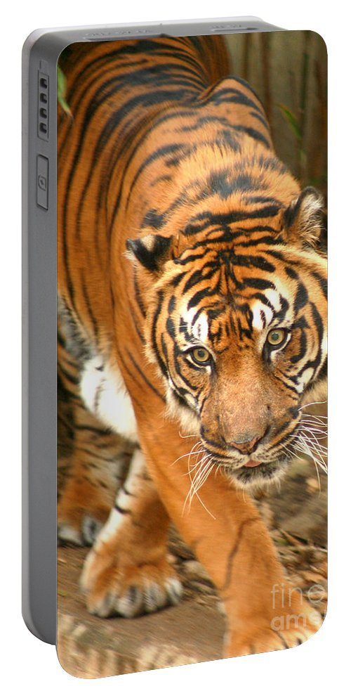 Bengal Portable Battery Charger featuring the photograph Bengal Tiger by Thomas Marchessault