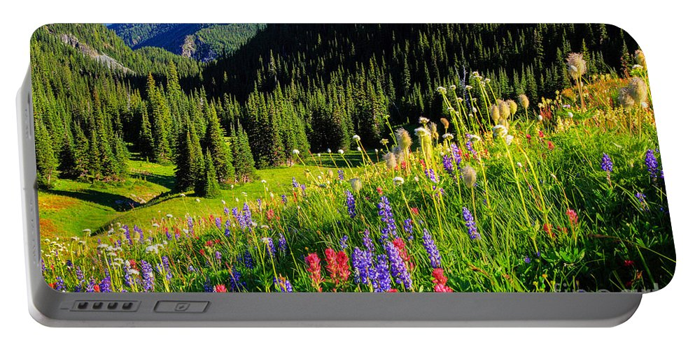 America Portable Battery Charger featuring the photograph Berkeley Park by Inge Johnsson