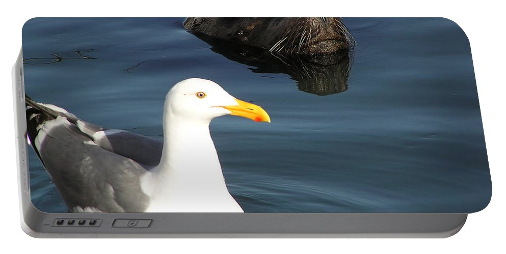 Seagull Portable Battery Charger featuring the photograph Best Friends by Louise Magno