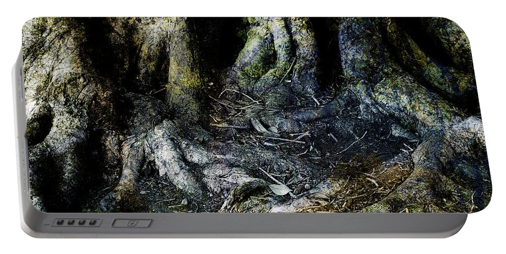 Tree Portable Battery Charger featuring the photograph Beyond The Forest Edge by Kelly Jade King
