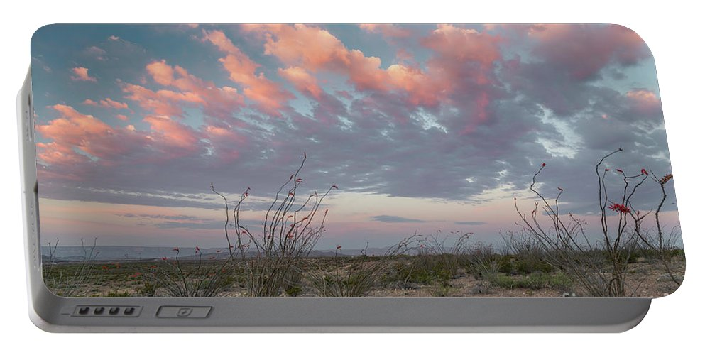 Big Bend National Park Portable Battery Charger featuring the photograph Big Bend Sunrise-blooming Ocotillo by Richard Sandford