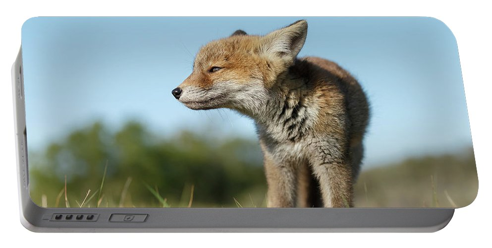Alert Portable Battery Charger featuring the photograph Big But Little by Menno Schaefer