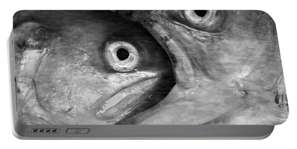 Fish Portable Battery Charger featuring the photograph Big Fish Eat Small Fish by Michal Boubin