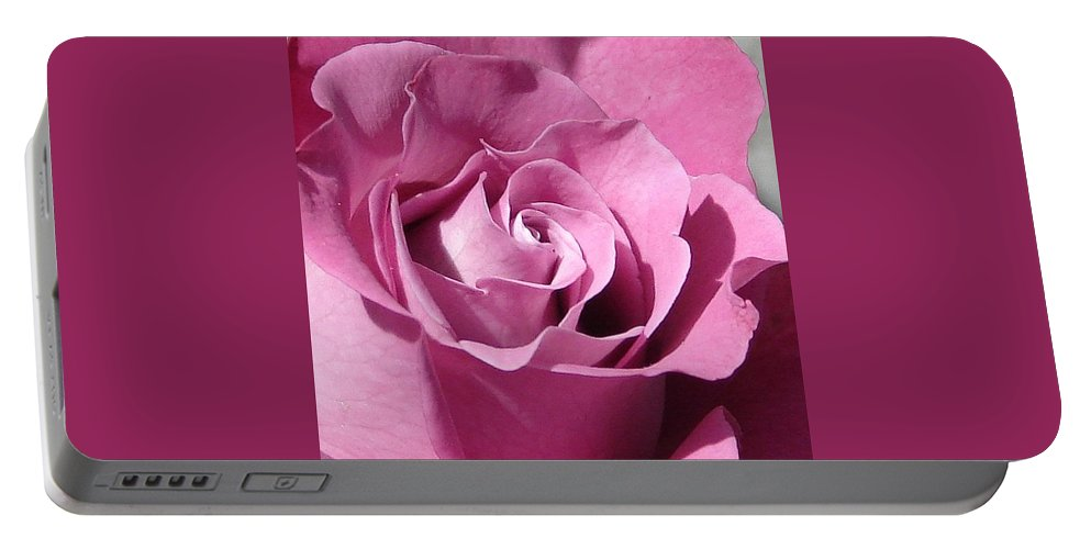 Rose Pink Portable Battery Charger featuring the photograph Big Pink by Luciana Seymour
