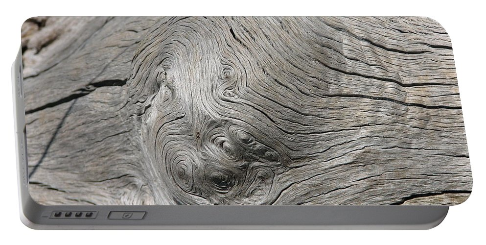 Tree Portable Battery Charger featuring the photograph Big Tree 6 by Kelly Mezzapelle