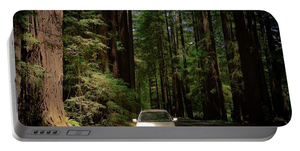 Portable Battery Charger featuring the photograph Big Tree Road by Anthony Lindsay