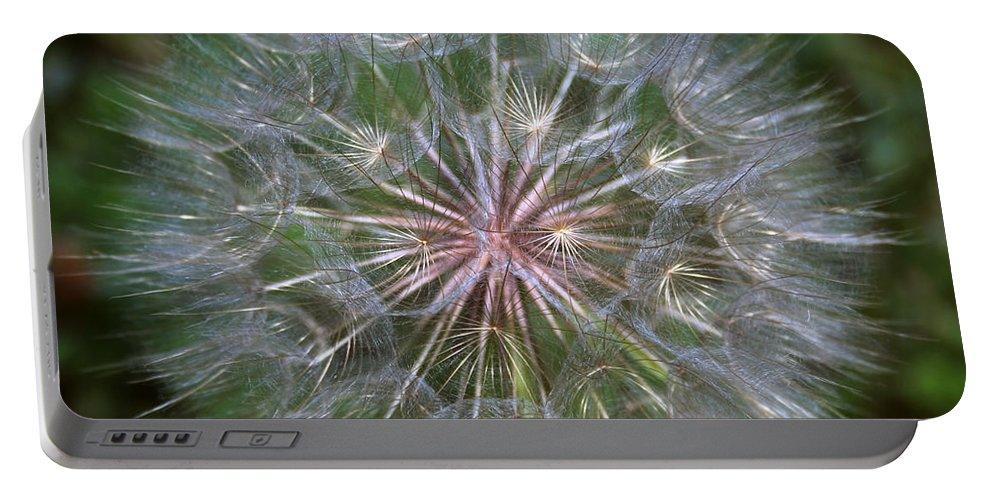 Dandelion Portable Battery Charger featuring the photograph Big Wish by Linda Sannuti