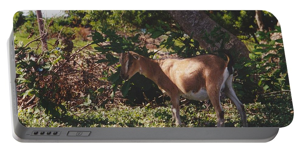 Art Portable Battery Charger featuring the photograph Billy Goat by Michelle Powell