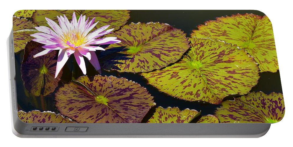 Biltmore Estate Portable Battery Charger featuring the photograph Biltmore Lily by Lisa Kleiner