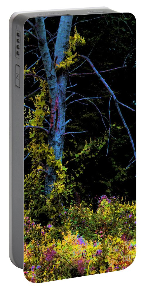 Birch Trees In Summer Portable Battery Charger featuring the photograph Birch And Vines by Joanne Smoley