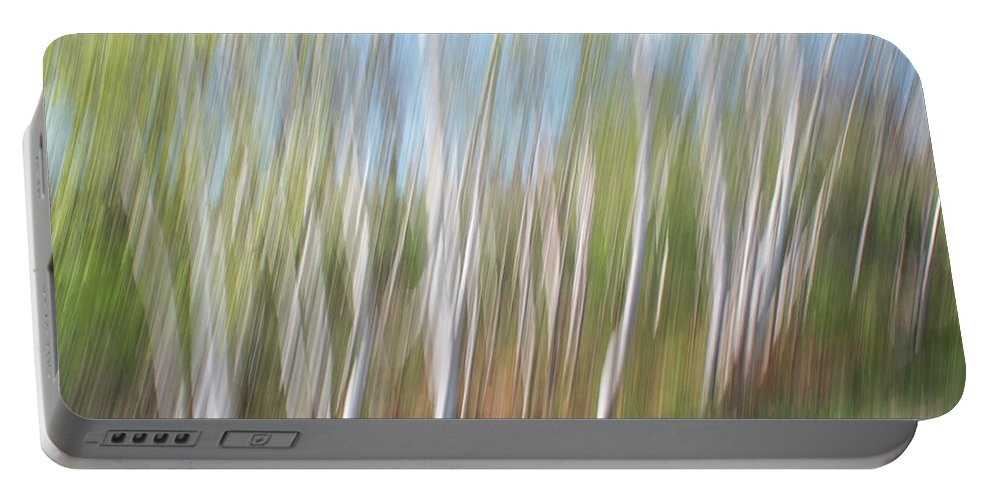 Birch Portable Battery Charger featuring the photograph Birch Dream #3 by Alan Brown