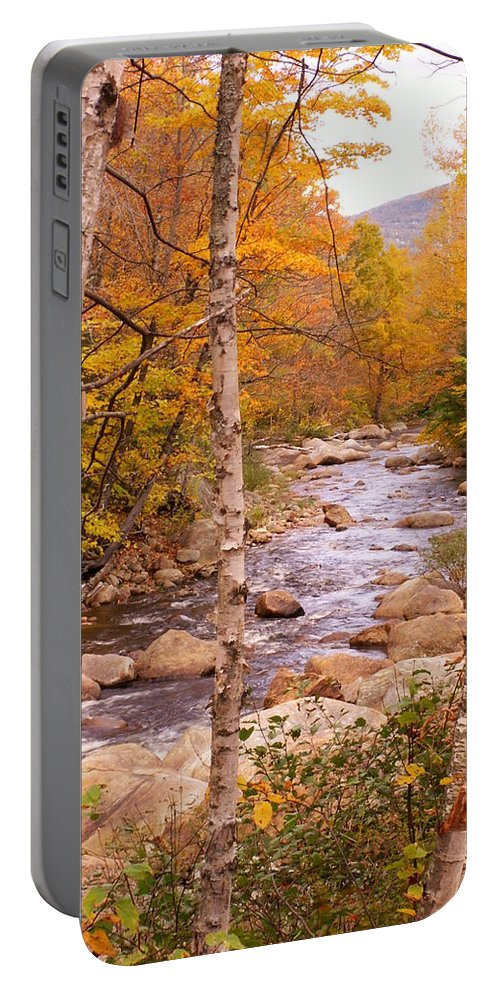 Landscape Portable Battery Charger featuring the photograph Birches On The Kancamagus Highway by Nancy Griswold