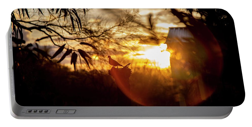 Bird Portable Battery Charger featuring the photograph Bird At Sunset Color by Fine Art
