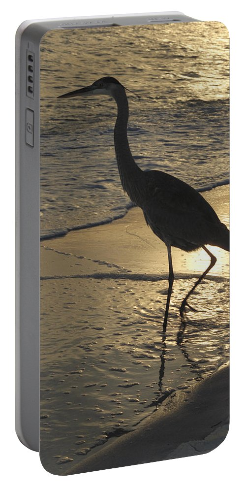 Heron Portable Battery Charger featuring the photograph Bird In Paradise by Jerry McElroy