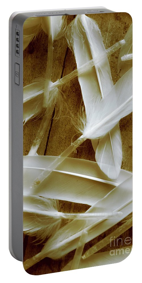 Spirituality Portable Battery Charger featuring the photograph Bird-less Of A Feather by Jorgo Photography - Wall Art Gallery