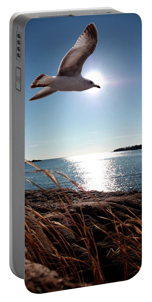 Bird Portable Battery Charger featuring the photograph Bird Of Life by Mark Ashkenazi