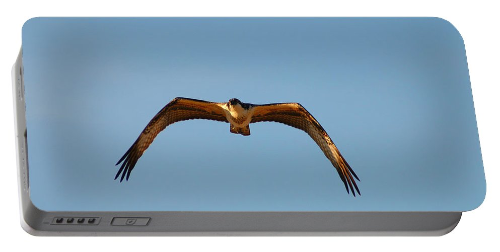 Clay Portable Battery Charger featuring the photograph Bird Of Prey by Clayton Bruster