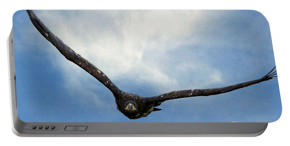 Eagle Portable Battery Charger featuring the photograph Birds 59 by Ben Yassa