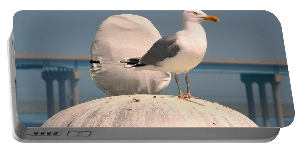 Bird Portable Battery Charger featuring the photograph Bird's Eye View by Arlane Crump