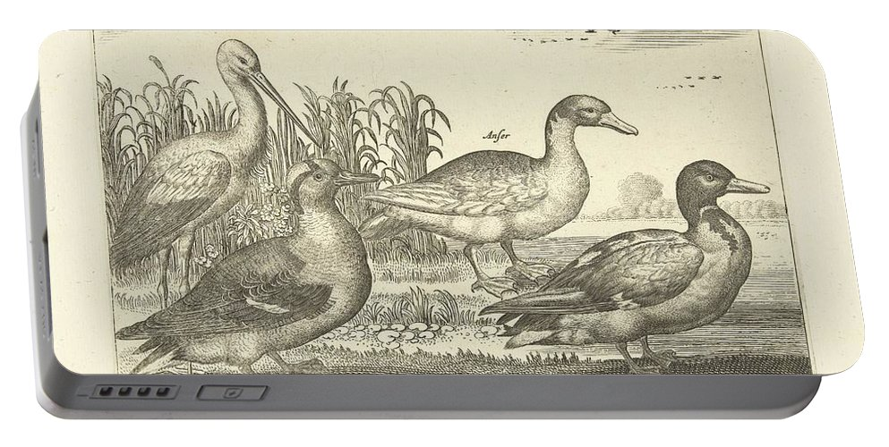 Duck Portable Battery Charger featuring the painting Birds In The Reeds, Adriaen Collaert, 1659 by Adriaen Collaert