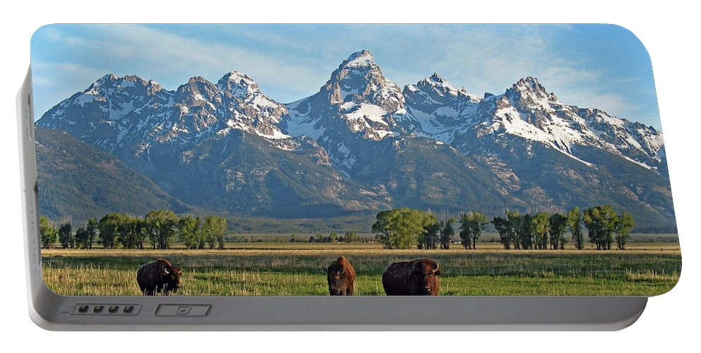 Bison Portable Battery Charger featuring the photograph Bison Range by Scott Mahon