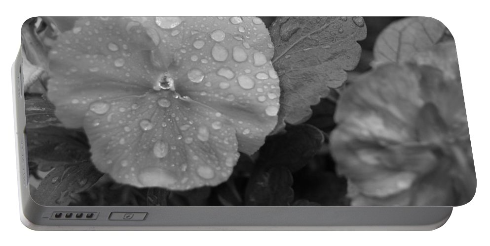Flower Portable Battery Charger featuring the photograph Black And White Dewy Pansy 1 by Amy Fose