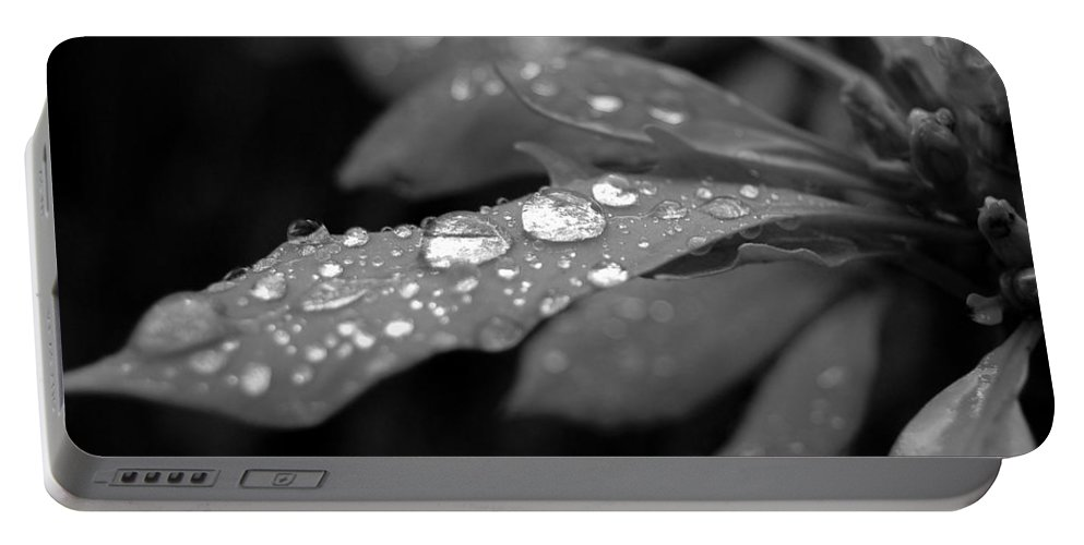 Black And White Portable Battery Charger featuring the photograph Black And White Dewy Petals by Amy Fose