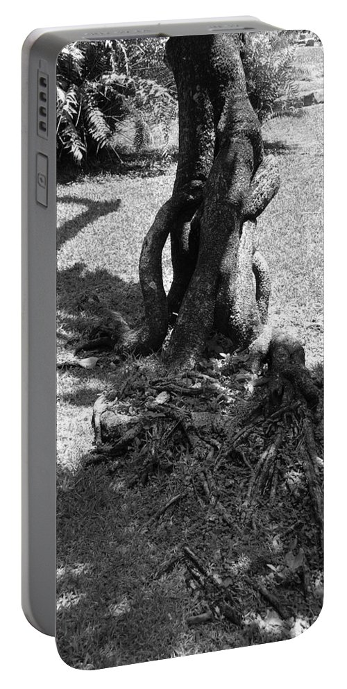 Black And White Portable Battery Charger featuring the photograph Black And White Roots by Rob Hans